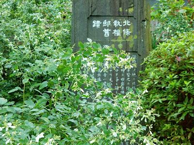 宝戒寺のハギ