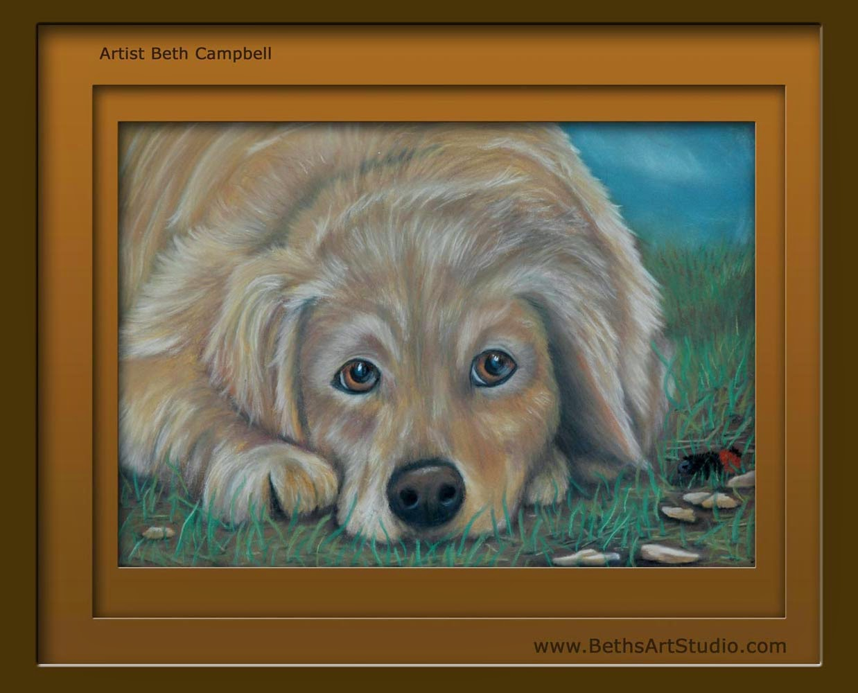 pastel painting golden retriever mix breed