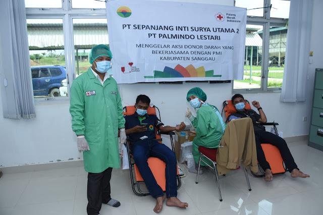 Stock Darah di BLOODBANK mulai Berkurang, PMI Sanggau Adakan Donor Darah Sukarela