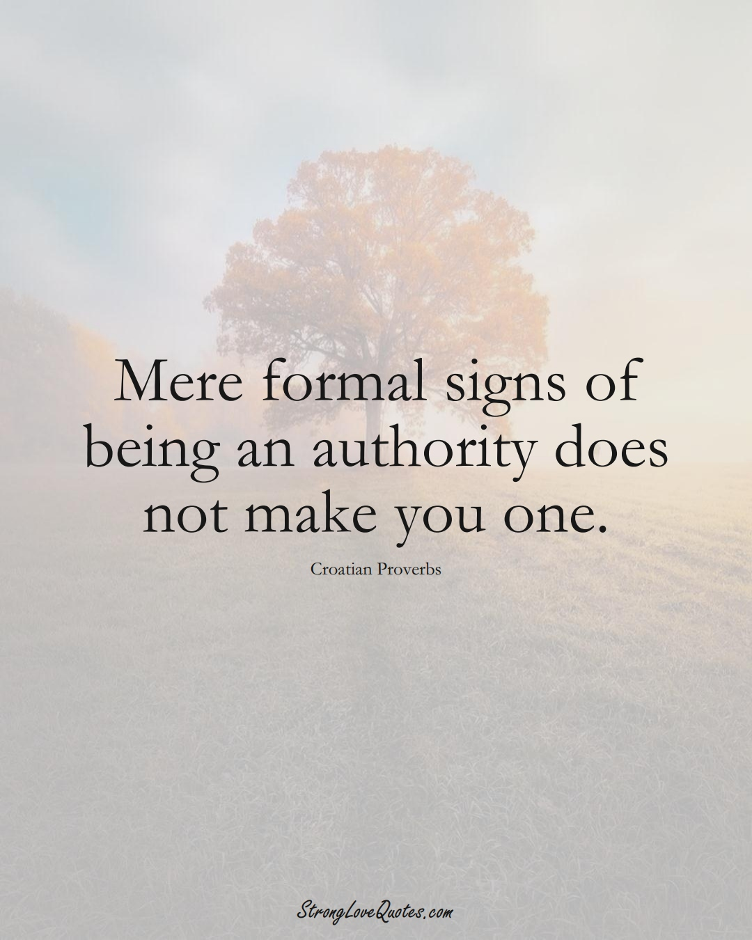 Mere formal signs of being an authority does not make you one. (Croatian Sayings);  #EuropeanSayings