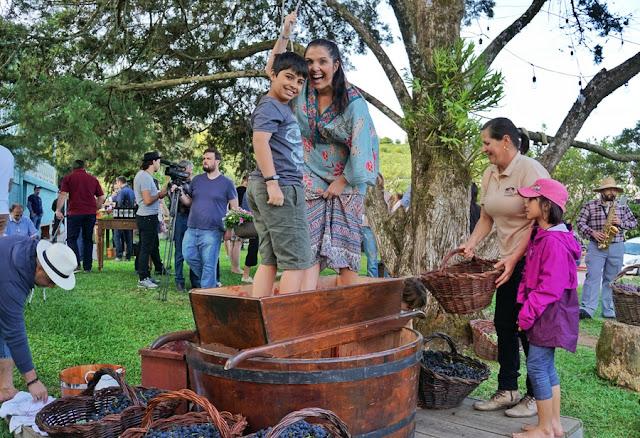 Onde participar da Vindima na Serra Gaúcha: 6 lugares onde você pode participar da colheita e pisa das uvas