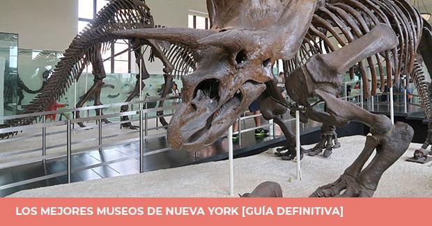 Museos en Nueva York guia
