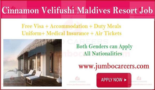 All Job vacancies in Maldives with salary and benefits,