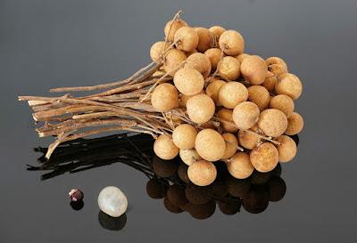 buah klengkeng