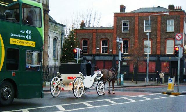 Transporting Running Horse