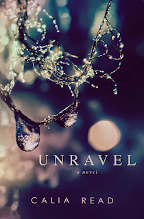 https://www.goodreads.com/book/show/16466436-unravel