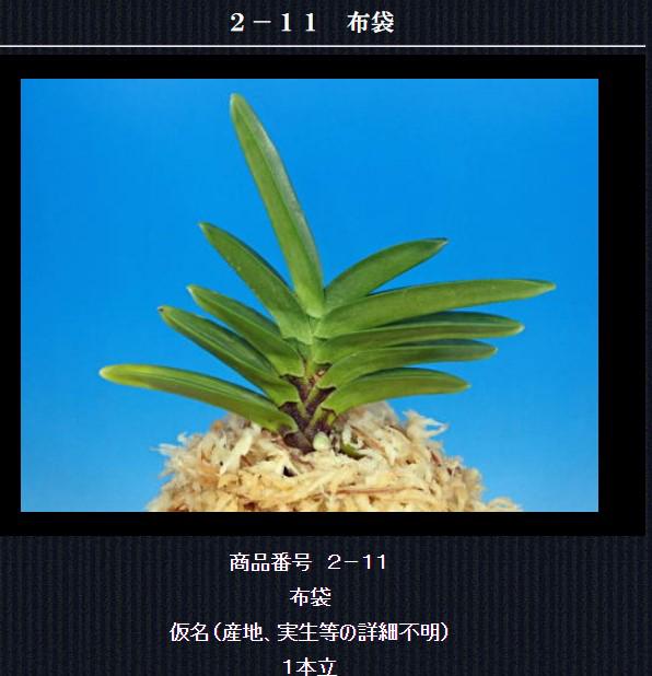 http://www.fuuran.jp/2-11html