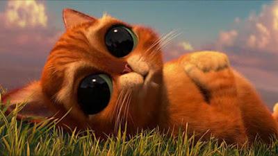 Gelaarsde kat
