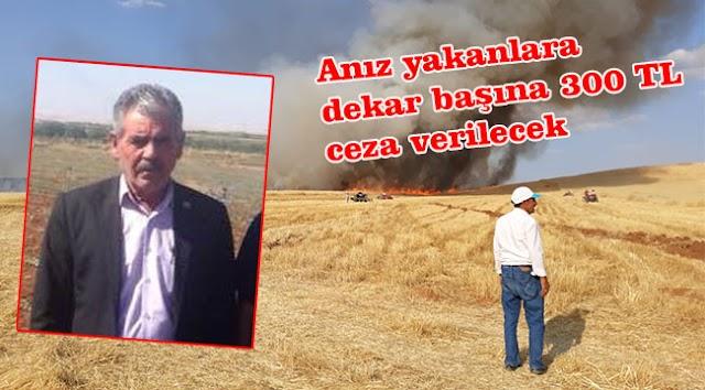 'Anız yangınları verimi olumsuz etkiliyor'