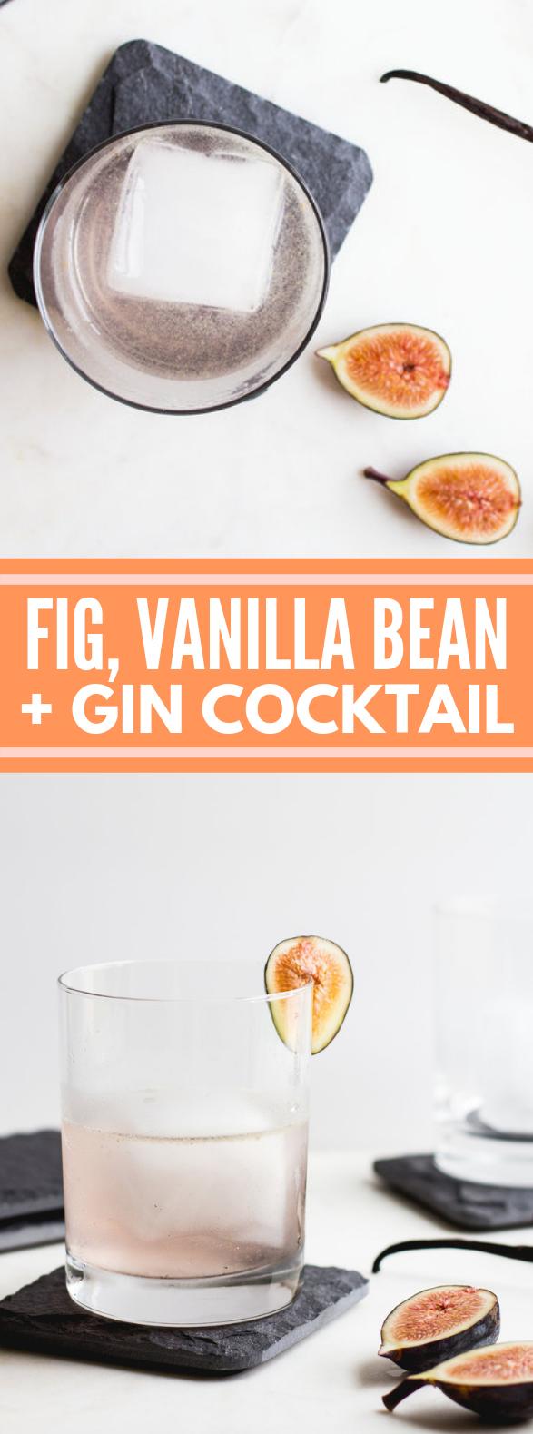 FIG, VANILLA BEAN + GIN COCKTAIL #drinks #vodka