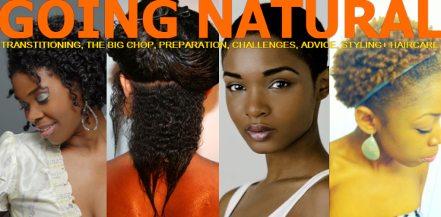 Brilliant My Kinks And Curls Going Natural The Beginners Guide To Styling Short Hairstyles Gunalazisus