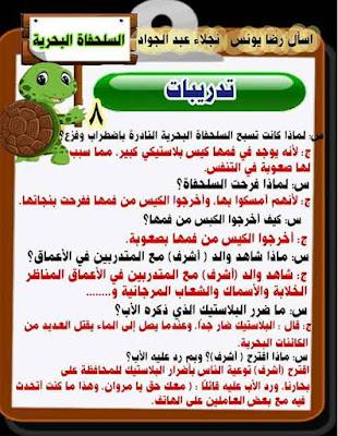 مذكرة شرح قصة الاستماع السلحفاة البحرية للصف الثالث الابتدائي منهج اللغة العربية الجديد