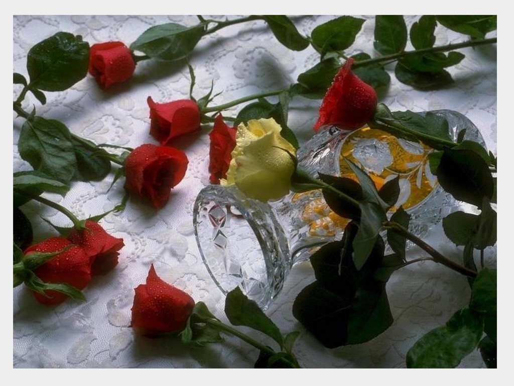 Wallpaper download dil - Free Downlod Love Rose Dil Hd Wallpapers 0027