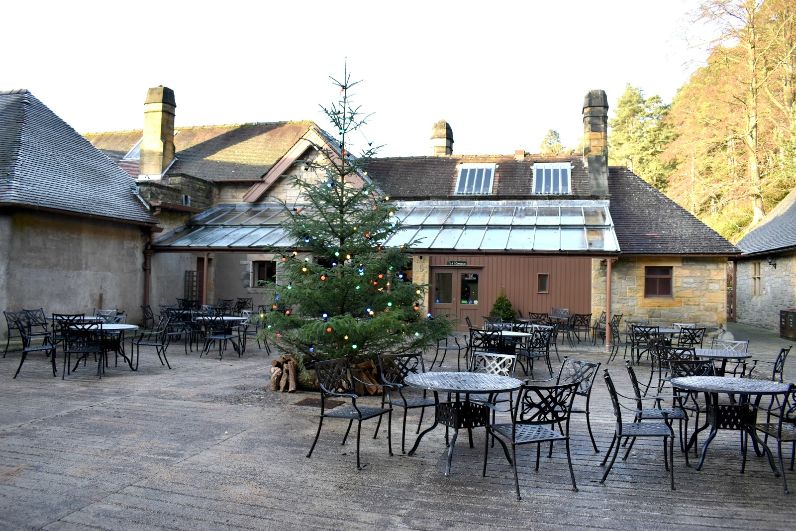 Christmas at Cragside - Tea Room