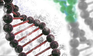 Biohacker Became The First Person To Edit His Own DNA