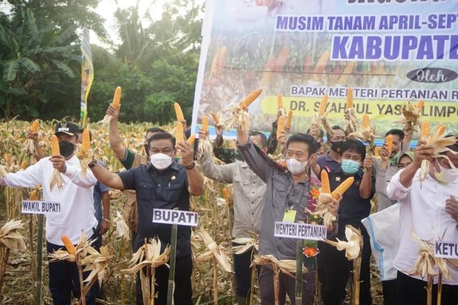 Tingkatkan Produksi Pertanian, Mentan SYL Kunjungi Bone
