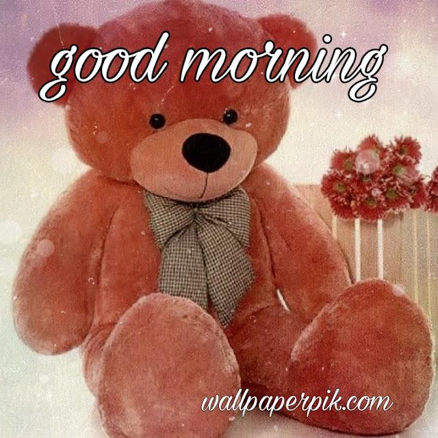 teddy cute good morning wishing image download