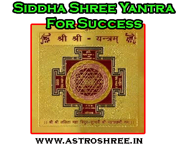 siddha shree yantra