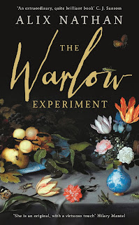 The Warlow Experiment by Alix Nathan book cover