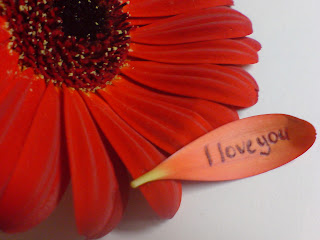 "What is Love:Love is an emotion of strong affection and personal attachment. Love is also a virtue representing all of human kindness, compassion, and affection; and ""the unselfish loyal and benevolent concern for the good of another"". Love is central to many religions, as in the Christian phrase, ""God is love"" or Agape in the Canonical gospels.Love may also be described as actions towards others (or oneself) based on compassion, or as actions towards others based on affection. In English, love refers to a variety of different feelings, states, and attitudes, ranging from pleasure (""I loved that meal"") to interpersonal attraction (""I love my partner""). ""Love"" may refer specifically to the passionate desire and intimacy of romantic love, to the sexual love of eros, to the emotional closeness of familial love, or the platonic love that definesfriendship, to the profound oneness or devotion of religious love.This diversity of uses and meanings, combined with the complexity of the feelings involved, makes love unusually difficult to consistently define, even compared to other emotional states."