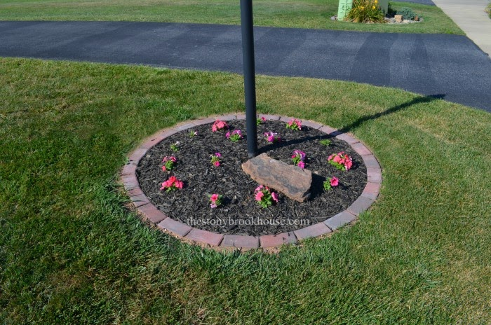 Planting Petunias in brick garden ring