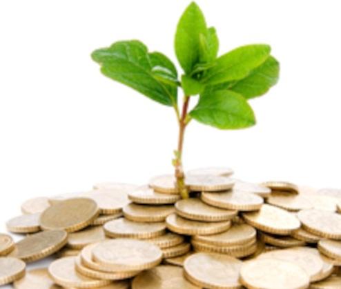 Investasi Tanah Menurut Islam