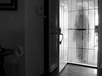 Mujer Graba Fantasma Frente su Puerta