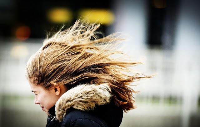 У неділю в Україні очікується штормовий вітер, - ДержНС