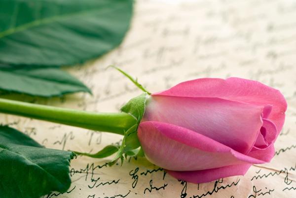 Doux mots pour la saint valentin