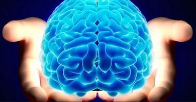 5 Hal yang dapat Merusak Otakmu