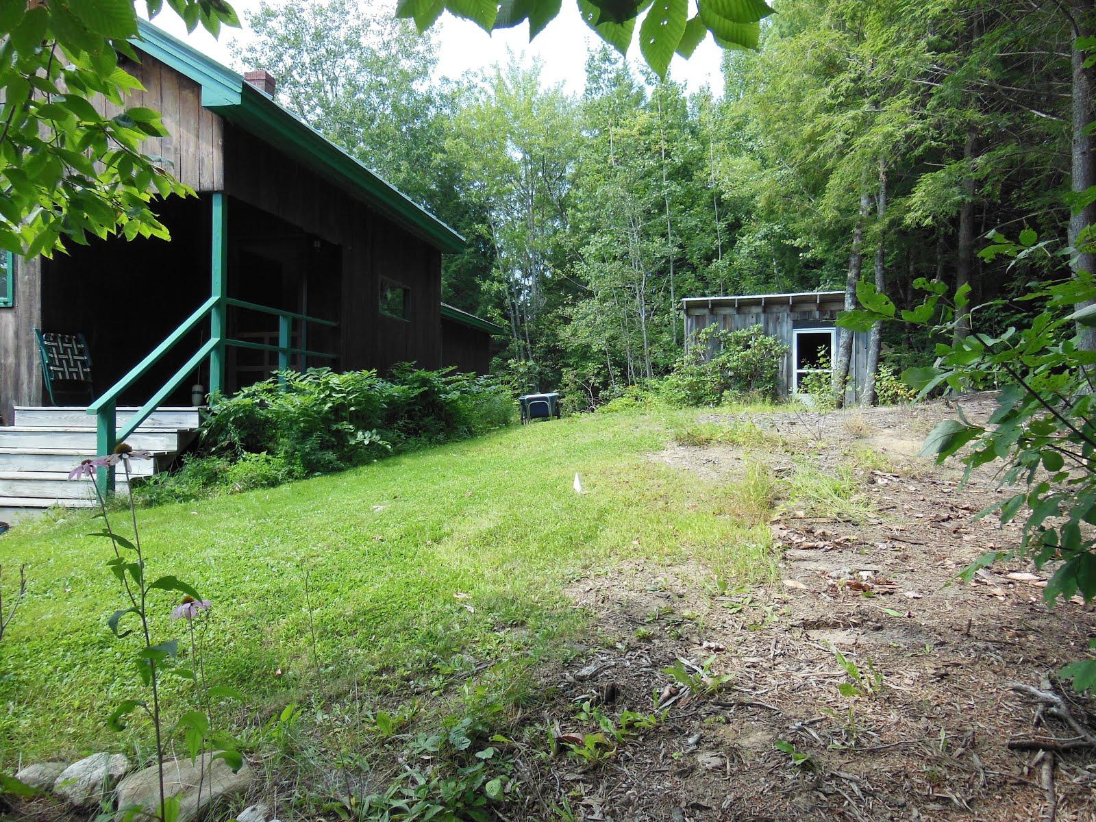 Meg Lord Landscaping: design/installation Naturalized Woodland Garden Slope Design on woodland garden area, woodland garden trail, woodland garden shade, woodland garden stream,