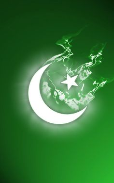 Pakistani%2BFlag%2BHoly%2BDay%2B%252812%2529