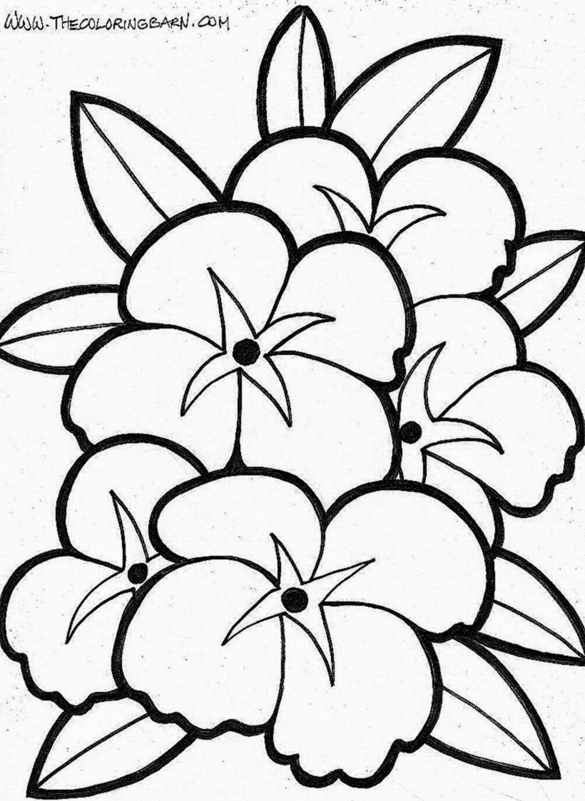1000 images about flower coloring pages on pinterest flower