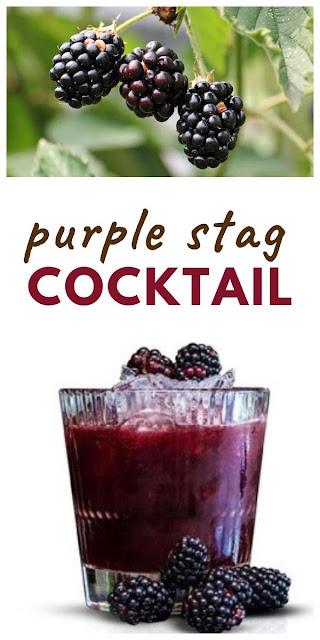 A summer cocktail with the flavours of blackberries made with Jägermeister, plus a guide to summer fruity and botanical alcoholic drinks. #cocktail #fruitycocktail #cocktailrecipes #blackberries #blackberryrecipes #summerrecipes