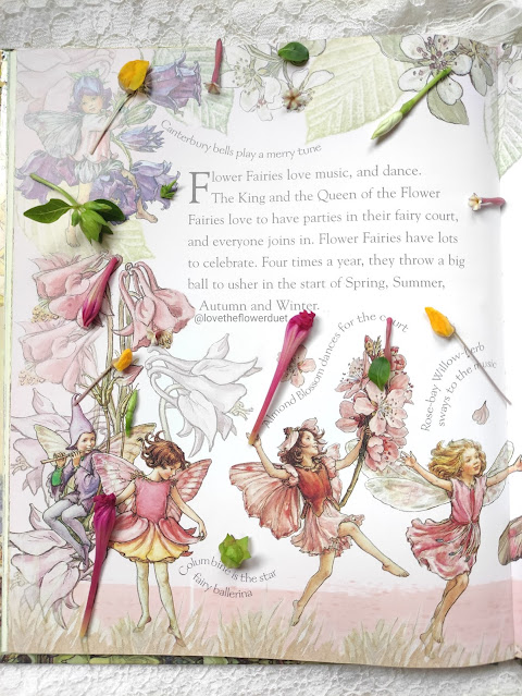 flower fairies book