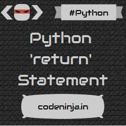 python-return-statement-return-values