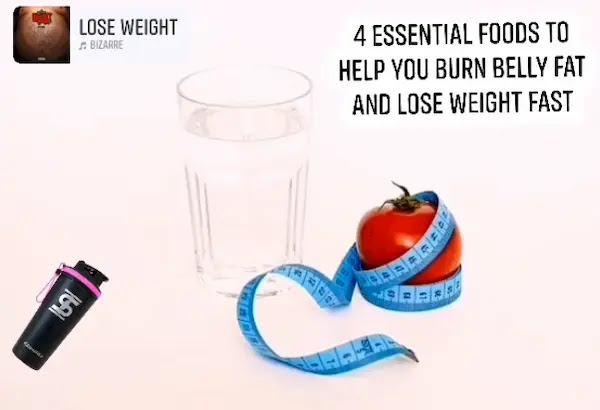 4 Essential Foods To Help You Burn Belly Fat and Lose Weight Fast
