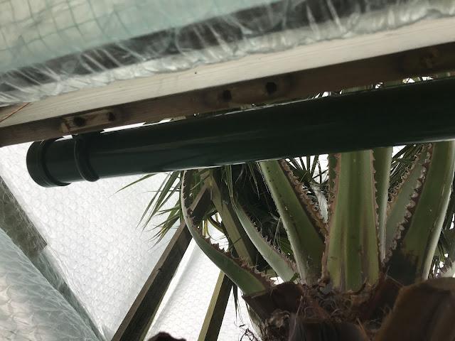 Frostwächter Rohrform Palmenheizung Überwinterungshaus