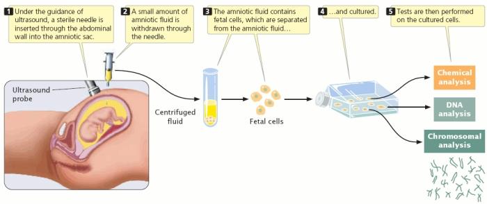 Genetics & Genetic Counselling