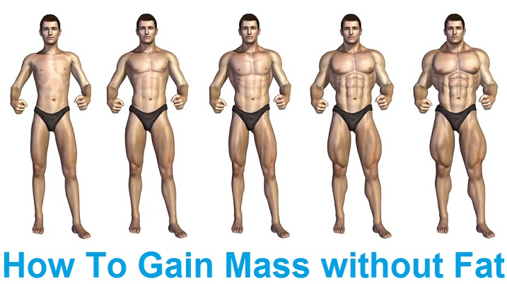 Top Gaining Tips - How To Gain Mass without Fat