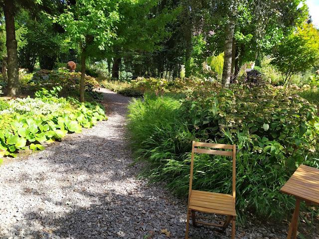 ogród leśny, żwirowa ścieżka
