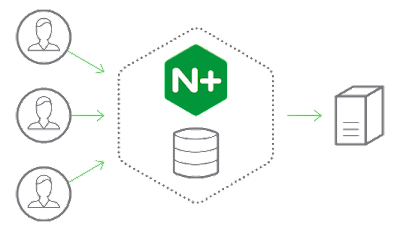 cache konten nginx plus general solusindo