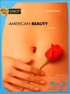 Belleza americana (1999)  HD [1080p] Latino [GoogleDrive] DizonHD