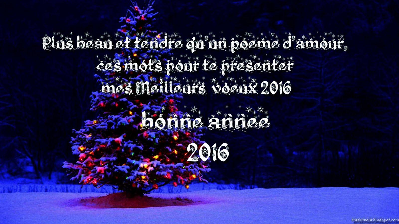 Pdf Message Voeux 2016