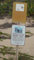 Protected area for nesting Wedge-tailed Shearwaters – Kaena Point, Oahu, HI – Dec. 29, 2013 – © Denise Motard