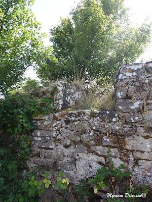 Meurtrière dans les ruines du castrum de Contrast dans la Montagne Noire Tarn