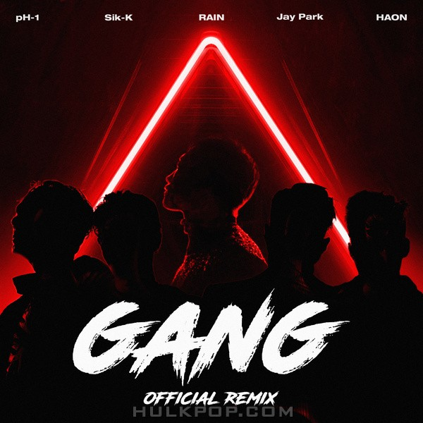 Sik-K & pH-1 & Jay Park & HAON – GANG Official Remix – Single
