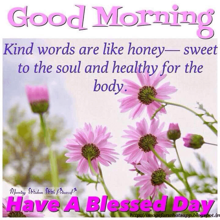 Healthy Good Morning Quotes: Images For WhatsApp: Healthy Good Morning Wishes To Friends