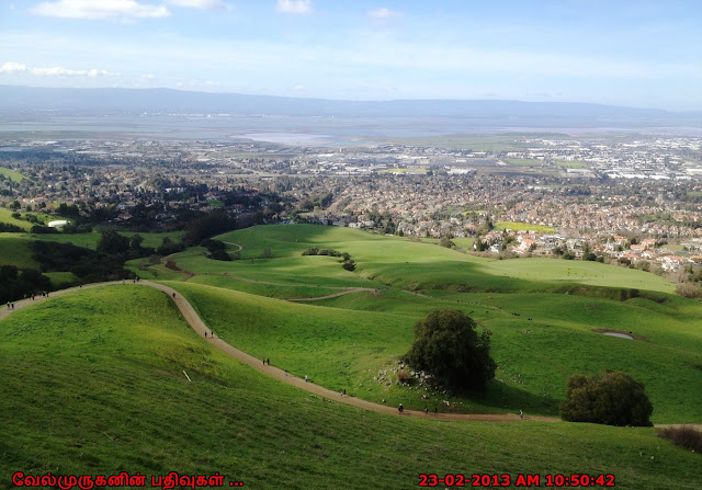 Mission Peak Regional Preserve Trail