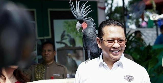 Ketua MPR: Kasus Penusukan Wiranto Jadi